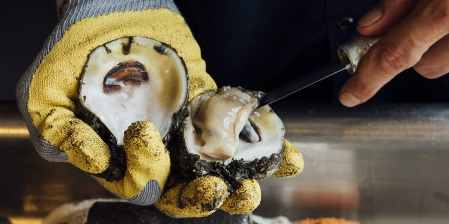 Ryan Prewitt_Oyster Shucking