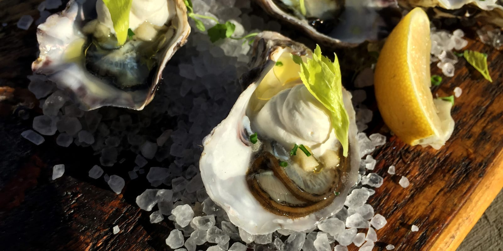 How to Eat an Oyster