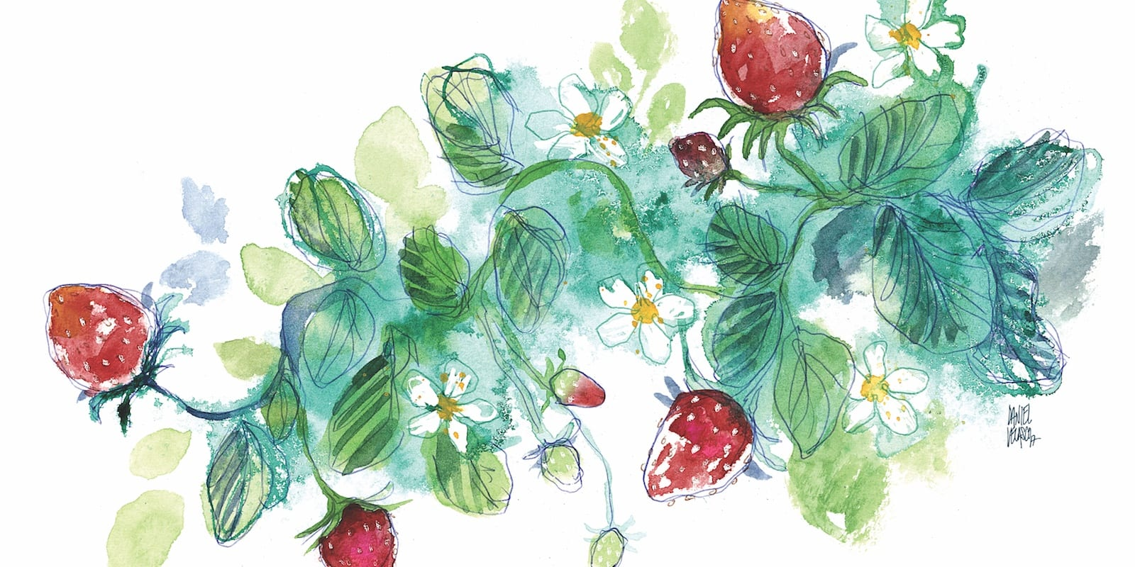 What's in Season: Strawberries