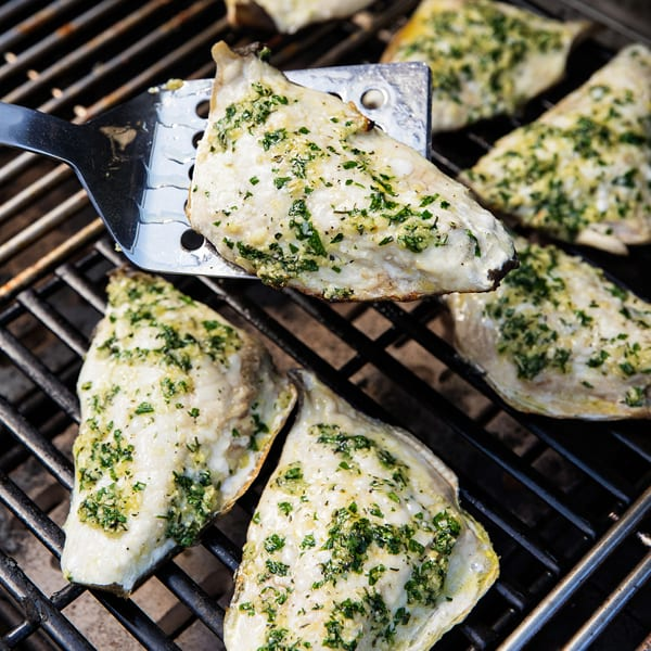 Grilled Triggerfish with Red Wine Butter Sauce