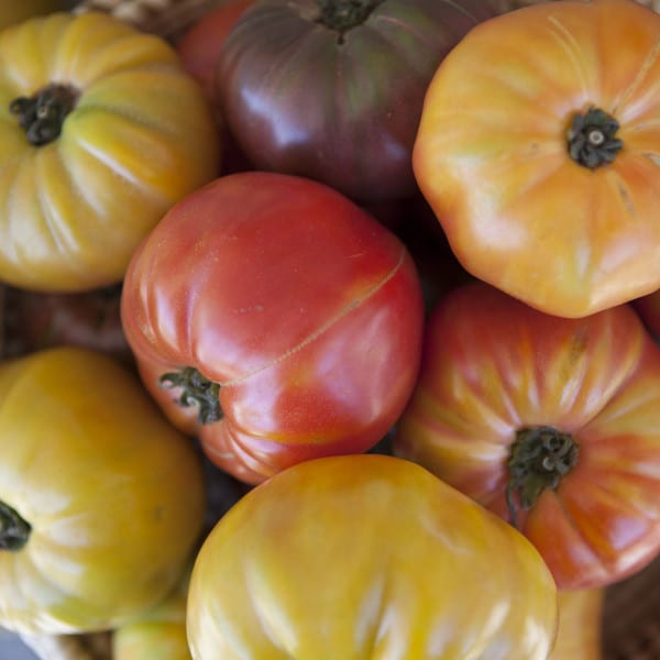 Heirloom Tomato Gazpacho