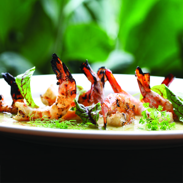 "Wood-Grilled Shrimp with White Cucumber ""Gazpacho"""