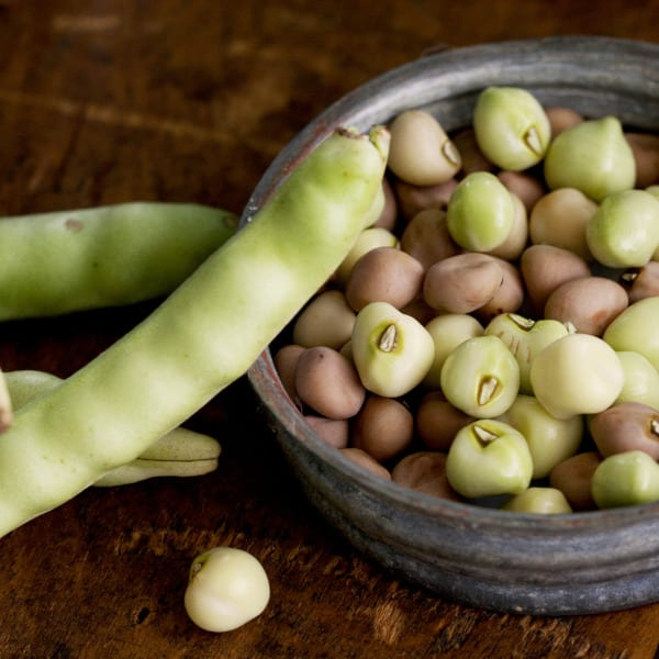 A Field Guide to Field Peas