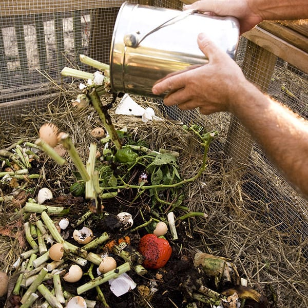 From Restaurant Kitchen to Your Bed of Begonias