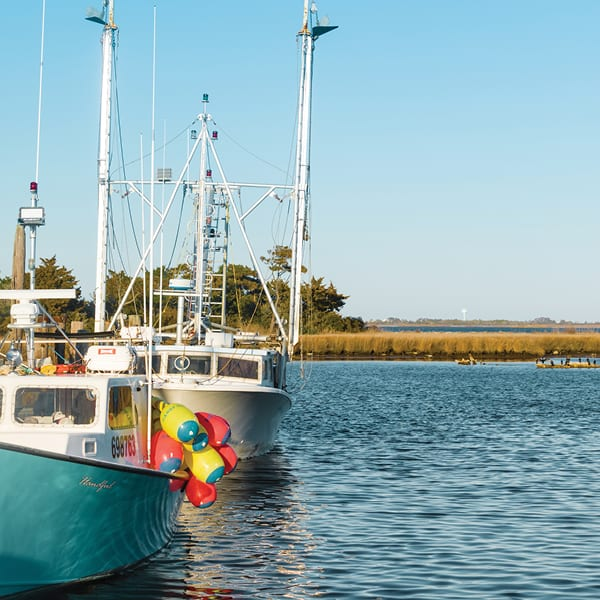 Take a Tour of <br>NC's Outer Banks