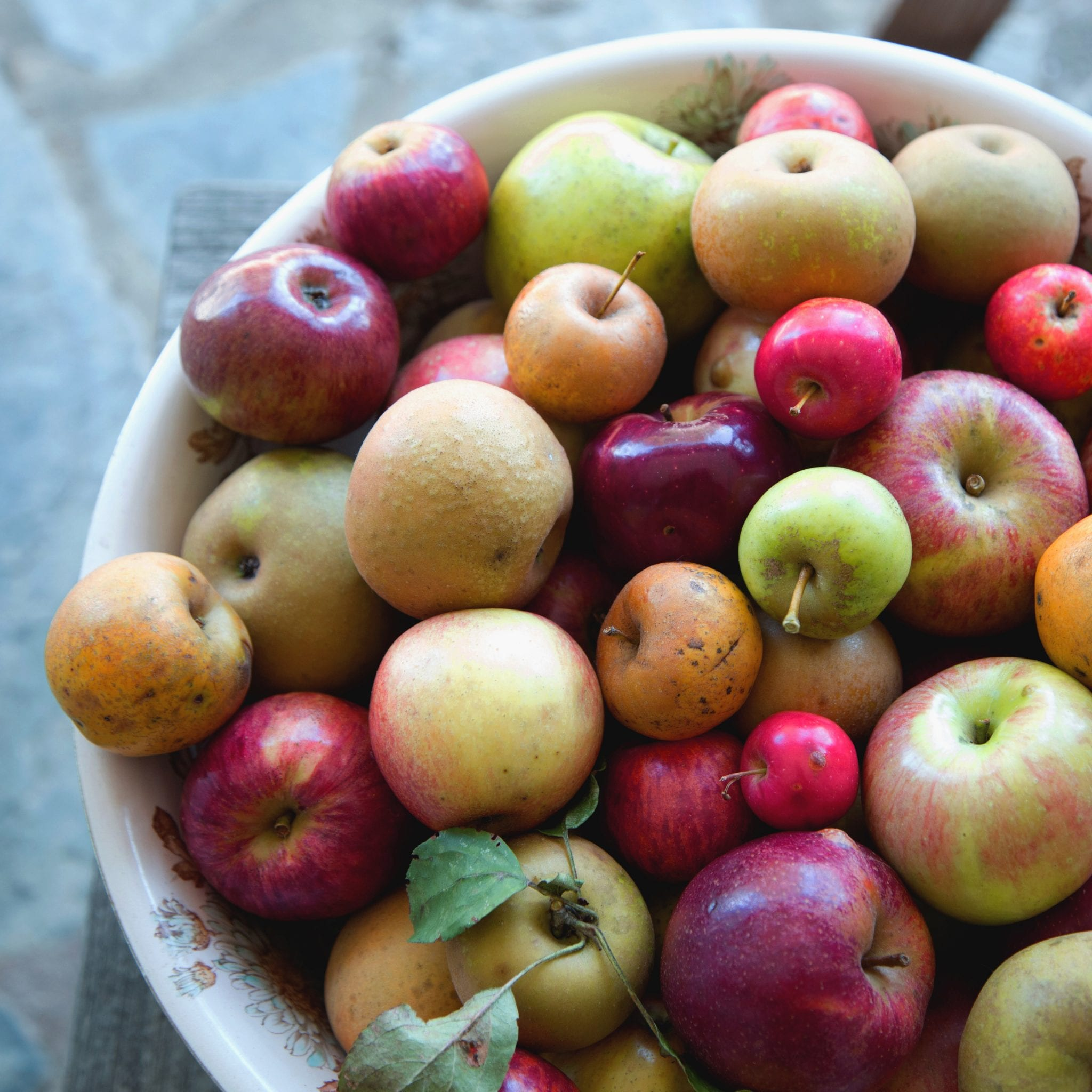 Meet Lee Calhoun: The Savior of Southern Heirloom Apples