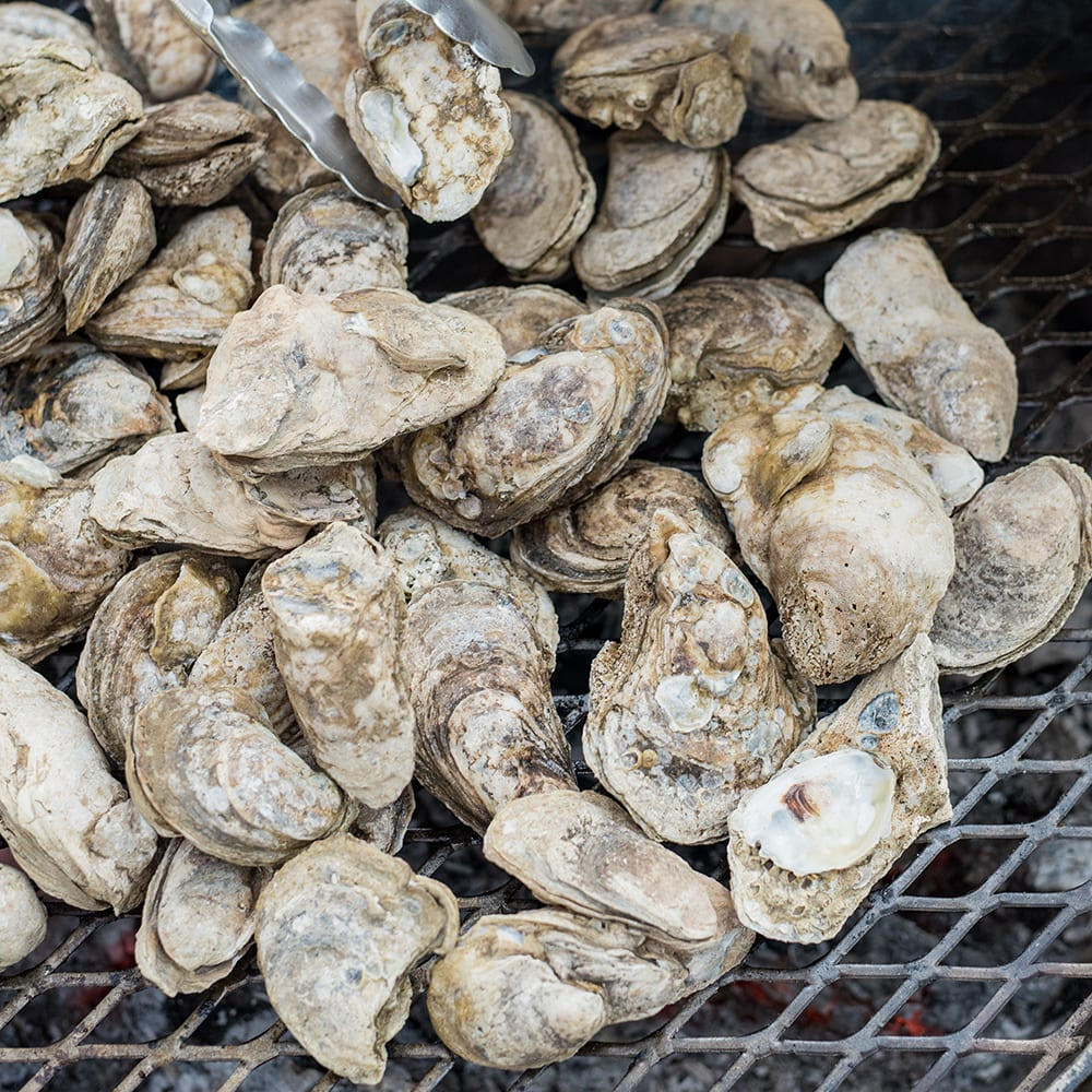 Kettle-Roasted Oysters