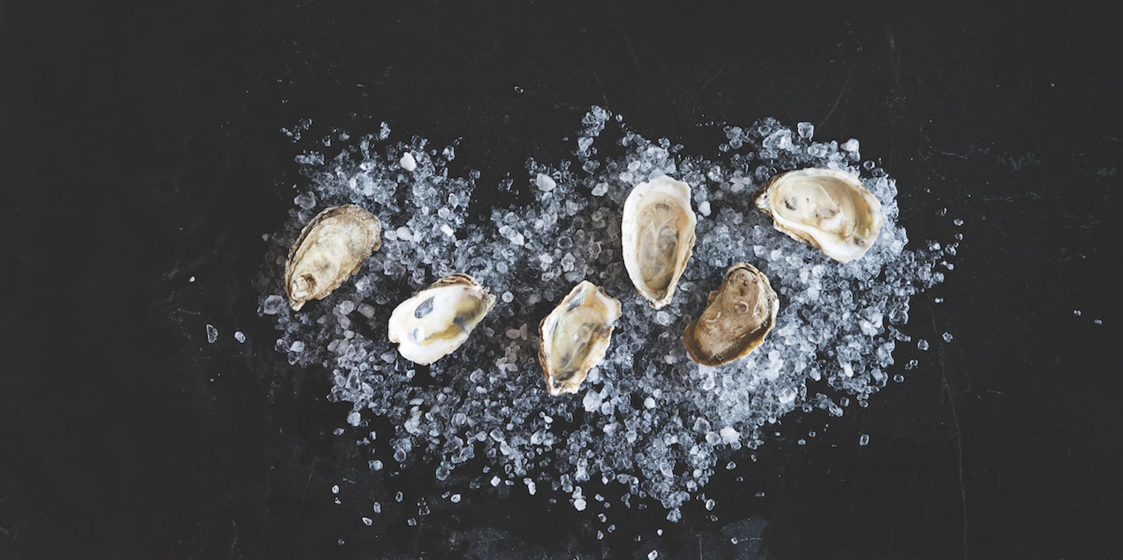 Easy Does It: Oysters